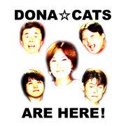 歌謡メタルBAND【DONA☆CATS】