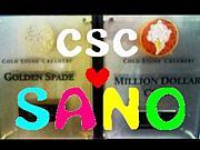 #002 CSC SANO
