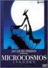 micro cosmos ミクロ・コスモス
