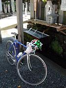 週末は自転車で。