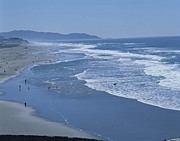 西海岸風のナリで撮る写真同好会