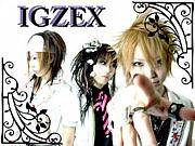IGZEX
