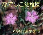 なでしこ幼稚園(神奈川県平塚市)