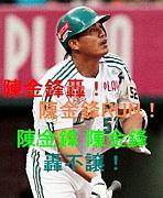 韓国・台湾野球の応援が好き