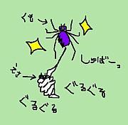 クモにゴハン
