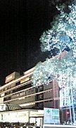 横浜フレンドクラブ(YFC)