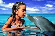 反捕鯨*イルカを食べる人は嫌い
