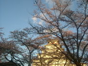 仙台市立古城小学校