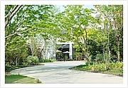 福岡で癒しの空間を見つけよう!