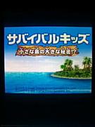 【DS】サバイバルキッズ3