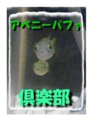 アベニーパファ クラブ!!