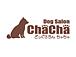 DogSalon ChaCha