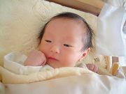 2004年6月17日生まれ