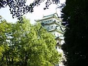 シンデレラランチ in Nagoya