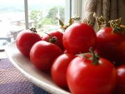 トマトジュースを探してます