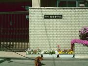 大阪市立相生中学校