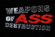 肛門破壊兵器