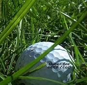 QBゴルフ部