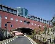 東京造形大学2011年度入学者