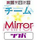 チーム★Mirrorつくば2010