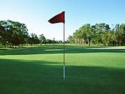 -HUBBER- Golf Club