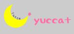 +++ yucca +++