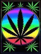 飛騨 reggae!!