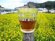 梅酒会(梅酒サークル)