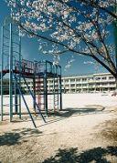 新松戸南小学校OB
