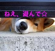 大阪、俺の暇に付き合え!!