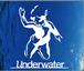 underwater records