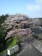 茨城大学 社会選修2010☆