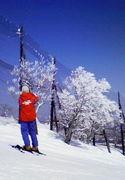 appi ski&snowboardschool