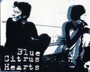 Blue Citrus Hearts