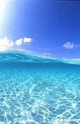 <小説>海からの、助走♪