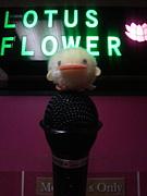 新宿カラオケバーLOTUS FLOWER