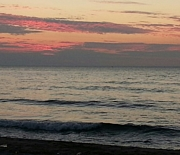 新潟の海を眺める人