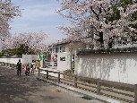 姫路市立野里小学校