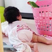 2013年12月出産ママの会@愛知