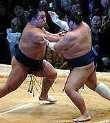 相撲好きなアイマスP