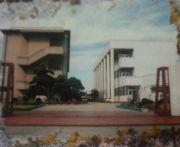 東忠岡小学校