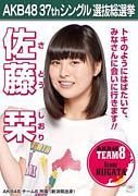 【AKB48チーム8】佐藤栞