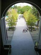 京都大学サークル「昼サー」