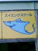 静岡駿泳会