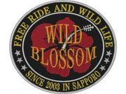 北海道 アメリカン WILD BLOSSOM