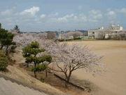 茨城町立桜丘中学校