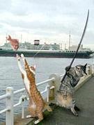 FISHING FIGHT CLUB