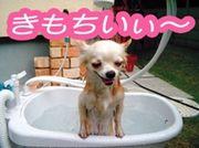 ★☆ローション風呂愛好家☆★