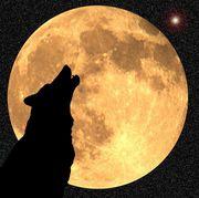 thirteen full moons
