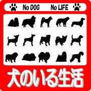犬のいる生活 *-東京-*